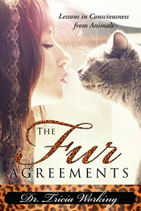 The Fur Agreement Book link